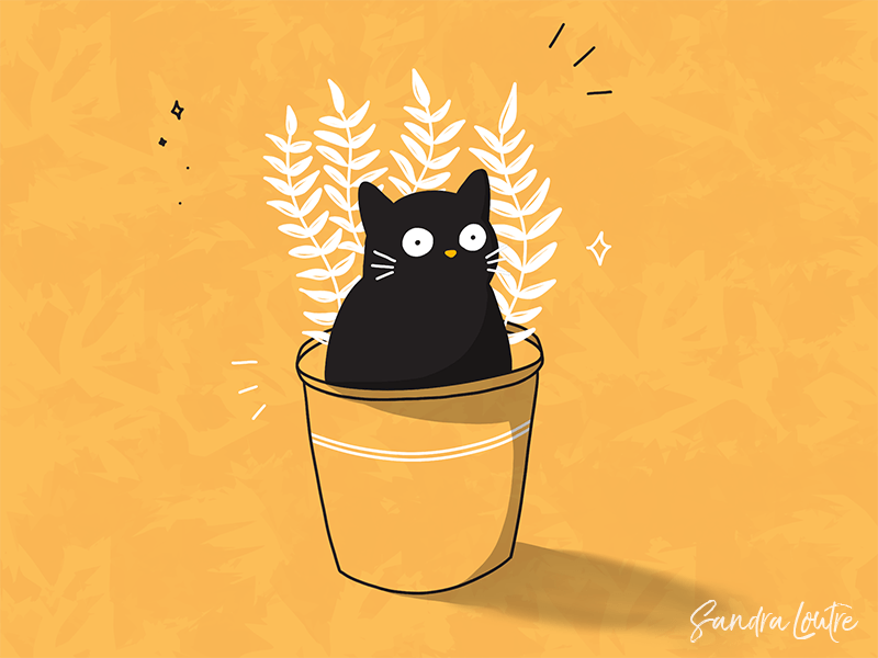 Potted cat and plant by Sandra Mondain